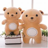 China Super cute soft polar bear bear plush toy bear dol DS-BR006 wholesale