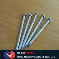 China Hot-dipped galvanized steel concrete nails sale wholesale