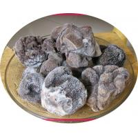 Buy cheap Truffle Frozen Truffle from wholesalers