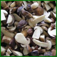Buy cheap FrozenBoletusEdulis from wholesalers