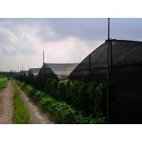 China insect proof net for greenhouse wholesale