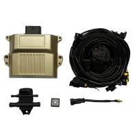 China Auto gas ECU kits with timing advance processors and OBD emulators for cars LN-08 wholesale