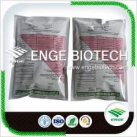 China Agrochemicals for wide use Carbendazim 50%WP,80%WP on sale