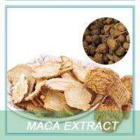 China Health Foods Maca Extract capsules Maca extract powder wholesale