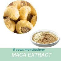 China Used In Health Product Industry //Maca Root Extract To Balance Human Hormone Secretion wholesale