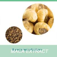 China health supplement 10:1 & 20:1 Maca Extract powder/medicine for sexual power function wholesale