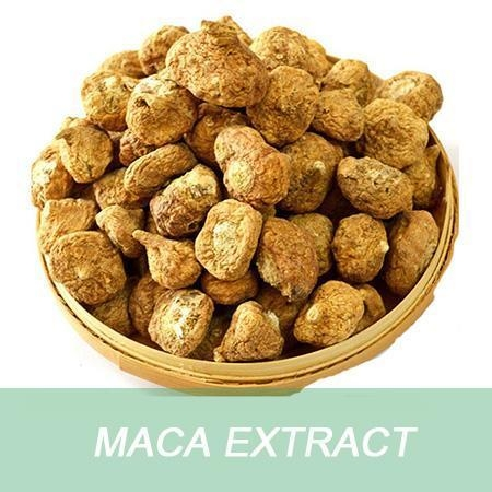 Quality wholesale alibaba health supplement Maca Extract powder capsules with improving sexual function for sale