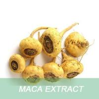 China wholesale alibaba health supplement Maca Extract powder capsules with sexual enhancement function wholesale