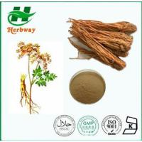 Buy cheap Angelica/Dong Quai from wholesalers