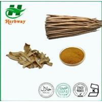 Buy cheap Burdock Root Extract from wholesalers