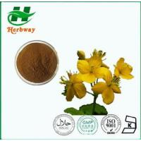 Buy cheap Celandine Extract from wholesalers