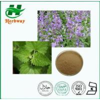 Buy cheap Cat Nut Extract from wholesalers