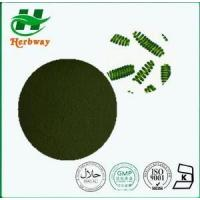 China Spirulina Powder Plant&herb Extract wholesale