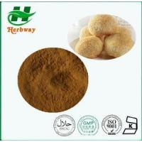 China Hericium erinaceus Extrac Plant&herb Extract wholesale