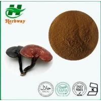 China Ganoderma Extract Plant&herb Extract wholesale