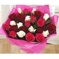 Buy cheap Flowers Two Dozen Red White & Pink Roses from wholesalers