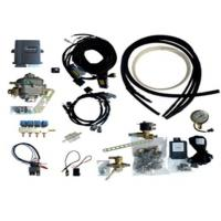 China Multipoint Sequential ECU for 6 Cylinder CNG / LPG computer oil to gas car modification wholesale