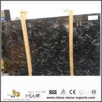 China Morocco Fossil Black Marble For Bathroom Floor Tiles Design And Sale wholesale
