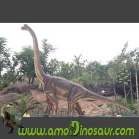 China Foam rubber of brachiosaurus for animatronic dinosaurs exhibit wholesale
