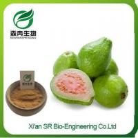 Buy cheap Guava Juice Powder, Organic Freeze Dried Guava Fruit Extract, Wholesale Guava Extract from wholesalers