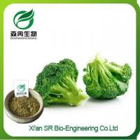 Buy cheap Broccoli Powder, China Supplier Organic Broccoli Powder, High Quality Broccoli Seed Extract from wholesalers