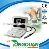 China Laptop Pig and Cow pregnancy Ultrasound Scanner MSLVU08H wholesale