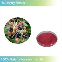 China Anti-aging Mulberry fruit P.E. wholesale