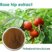 China fructus rosae p.e. vitamin c tablet rose hip , rose hip extract capsule, vitamin c rosehip 1000mg wholesale