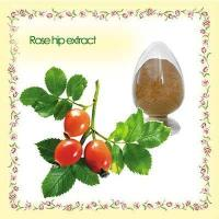 China 5:1/ 6:1/ 10:1 Hip Extract Rose Hip Powder For Vitamin C & Polyphenol & Flavones wholesale