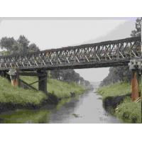 China Universal Surface Painted Long Span Bridge , Temporary Modular Bridge For Engineering wholesale