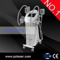 China popular cryolipo fat freezing cool body sculpting machine (HOT IN USA ) on sale