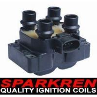 China Ignition Coil BY-111 wholesale
