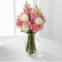 China Pink Beauty NO.34 deliver flower to shenzhen wholesale