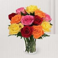 China 12 Multi Kisses NO.68 shenzhen flower delivery wholesale