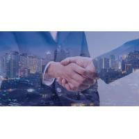 Buy cheap delaware llc registered agent from wholesalers