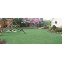 Buy cheap Artificial Grass Installation in Nashville, TN from wholesalers