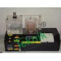 China Batch Enzyme Reactor wholesale