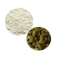 China Organic Plant Protein Organic Pumpkin Seed Protein wholesale
