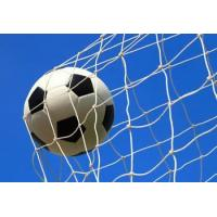 Buy cheap Football net for 5, 7, 11 players from wholesalers