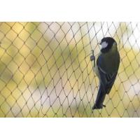 Buy cheap Anti-bird net controls effectively bird from wholesalers