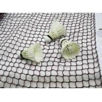 China Polyester net ideal for painting and screening wholesale
