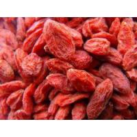 China Dried herbs Dried Godji Berry fruit wholesale
