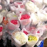 Buy cheap Fresh Carnation Flowers from wholesalers