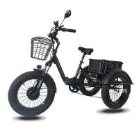 China bike wheel 20inch Fat Tire Electric 3 wheel Bicycle/Electric bike for Adults on sale