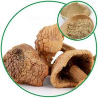 China Agaricus Blazei Powder, with the Function of Anti-cancer Wholesale China Manufacturer wholesale