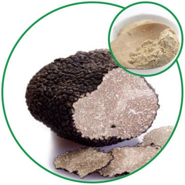 Quality Black Truffle Powder,with the Effective Ingredient Male Ketone China Wholesale for sale