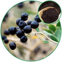 China Black Chinese Wolfberry Powder, to Eliminate the Free Radical Chinese Herbal Medicine wholesale