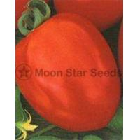 Quality Gala Tomato Seeds for sale