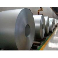 China HOT ROLLED /COLD ROLLED COILD/galvanized coils wholesale